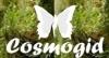 Cosmogid